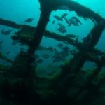 HMS Maori, Malta
